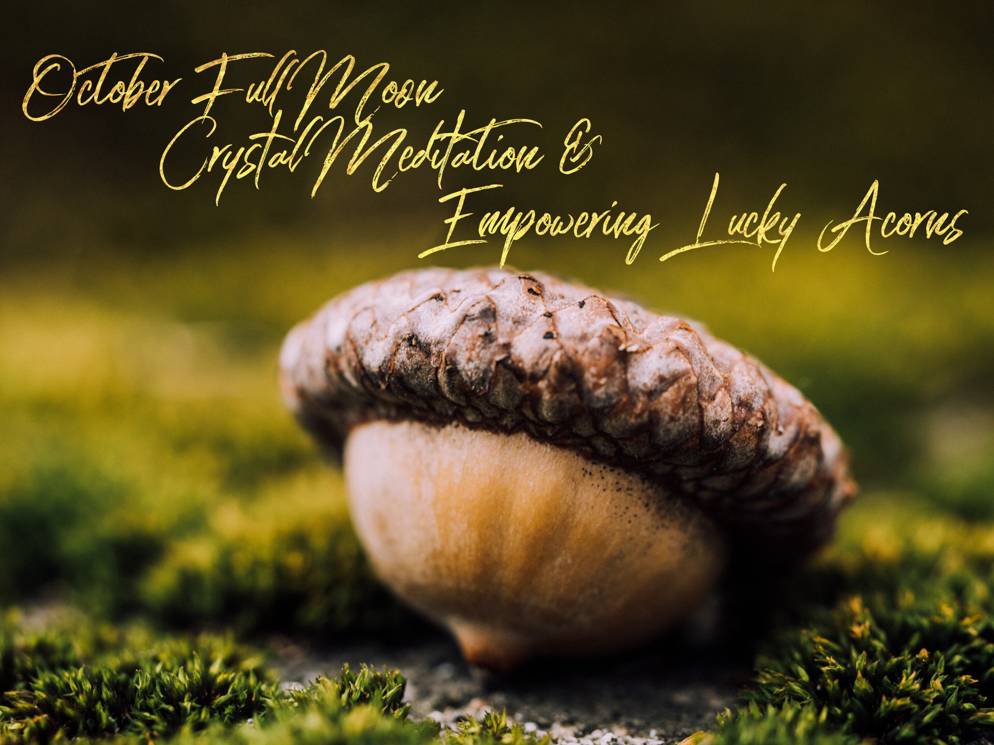 Full Moon Crystal Meditation and Empowering Lucky Acorns